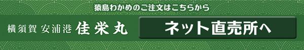 猿島わかめ_佳栄丸