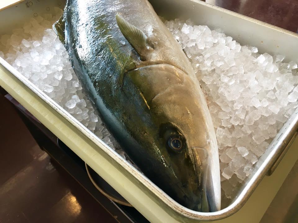 食彩お料理教室201602_6