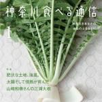 食材が届く情報誌「神奈川食べる通信 1月号」は三浦大根特集!
