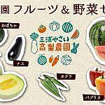 高梨農園 フルーツ&野菜セット